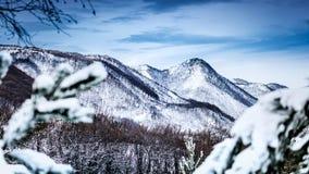 Winterschnee Natur-Park Zumberak Kroatien Samobor lizenzfreie stockfotografie
