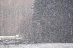 Winterschneefälle in der Landschaft Stockfotografie