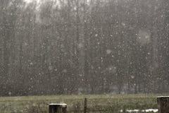 Winterschneefälle in der Landschaft Stockfoto