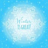 Winterschneefall-, große und kleineschneeflocken Stockfotografie