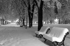 Winterschneepark Stockfoto
