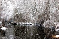 Winterschneesturm über einem Dampf im Wald lizenzfreie stockbilder