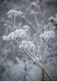 Winterschneewehen, russischer Winter Lizenzfreies Stockbild
