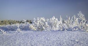 Winterschneewehen, russischer Winter Lizenzfreie Stockfotos