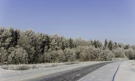 Winterschneewehen, russischer Winter Stockbilder