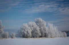 Winterschneewehen, russischer Winter Lizenzfreie Stockfotografie