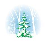 Winterse illustratie met spar Stock Afbeelding