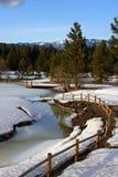 Winterse stroom stock foto's