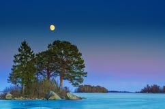 Winterseelandschaft mit Mond Stockbild