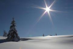 Wintersonne Stockfotos