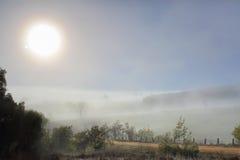 Wintersonne in der nebeligen Landschaft Stockbilder