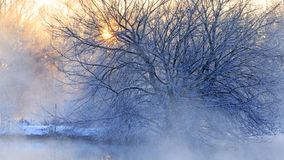 Wintersonnenaufgang über dem Fluss lizenzfreies stockbild
