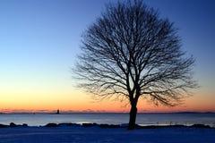 Wintersonnenaufgang über der Bucht lizenzfreies stockfoto