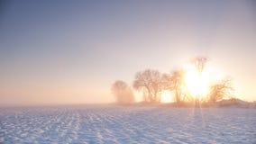 Wintersonnenaufgang Lizenzfreie Stockfotos