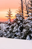Wintersonnenaufgang lizenzfreie stockfotografie
