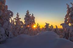 Wintersonnenaufgang lizenzfreies stockfoto
