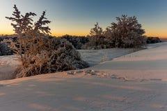 Wintersonnenaufgang an den Bergen Lizenzfreies Stockbild