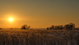 Wintersonnenuntergang in den Vororten Russland Stockbilder