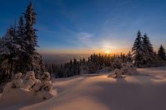 Wintersonnenuntergang-Schneefeld auf Berg mit eisigen Kiefern auf dem Hintergrund von taiga Wald und Hügeln unter buntem Himmel Stockfotografie