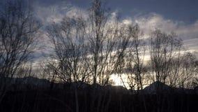 Wintersonnenuntergang und blauer Himmel gegen einen Hintergrund von funkelnden Bäumen und von Bergspitzen stock footage
