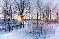 Wintersonnenuntergang vom Hügel Stockfotografie