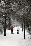 Winterspaziergang in einem schweren Fall des Schnees Lizenzfreies Stockbild