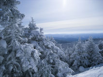 Wintersport di Maine Immagine Stock
