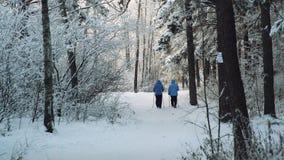 Wintersport im nordischen Gehen Älterer Frau, die draußen in den kalter Waldaktiven Leuten wandert stock footage