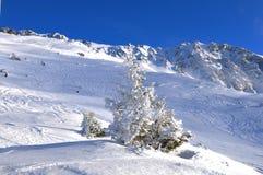 Wintersport Rothorn: Le alpi svizzere nevicano paesaggio della montagna, Lenzerheide immagini stock