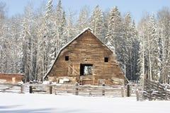 Winterstall stockbild