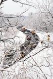 WinterStau Stockfoto