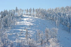 Wintersteigung Stockfoto