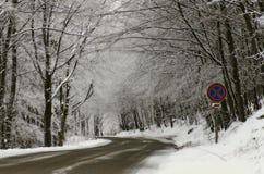 Winterstraße Lizenzfreies Stockfoto
