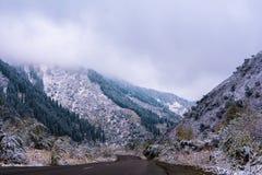 Winterstraße in den Bergen Sitz-Baumwald bedeckt im Nebel mis Stockfotografie