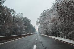 Winterstraße, die mit schneebedeckten Bäumen fährt stockfotos