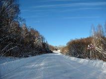Winterstraße durch den Wald Stockfoto