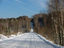 Winterstraße durch den Wald Stockbild