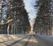Winterstraße durch den Wald Lizenzfreie Stockfotos