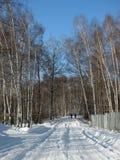 Winterstraße durch den Wald Lizenzfreie Stockfotografie