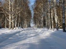 Winterstraße durch den Wald Stockfotografie