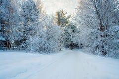 Winterstraße im Fairy-talewald stockfotos