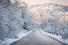 Winterstraße im schneebedeckten Wald Stockbilder