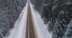 Winterstraße im Wald stock video