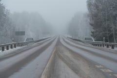 Winterstraße mit schlechter Sicht in Schweden lizenzfreie stockfotografie
