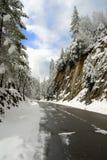 Winterstraße nach einem Sturm Stockbilder