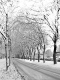 Winterstraße, Russland Stockbilder