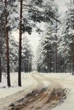 Winterstraße zu einem Holz Stockfoto