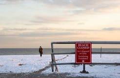 Winterstrand lizenzfreie stockfotografie