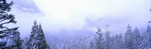 Wintersturm Stockbild