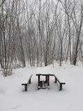 Winterstyle enero Coldweather imagenes de archivo
